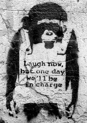 Banksy Poster monkey Laugh now, but one day we'll be in charge 42 x 59 cm