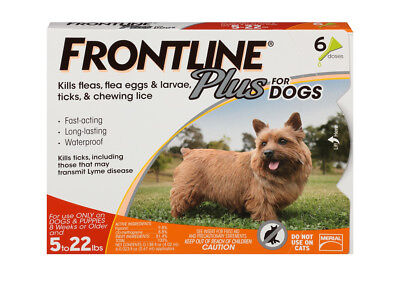 FRONTLINE Plus for Dogs Small Dog (5-22 lbs) Flea and Tick Treatment, 6 Doses