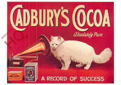 Picture Postcard--Cadbury's Cocoa Advertising (Repro) [Mayfair]