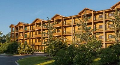 Valentine's Day - 11-15 Feb 19 - 1BR Deluxe N--D7 - Mountainloft - Gatlinburg,TN