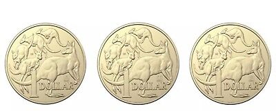 2019 Australian $1 One Dollar Coin A U S Privy Mark Set of 3 Coins Uncirculated