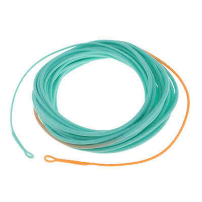 Skagit Shooting Head Fly Line Nylon & PVC Coated 17-25FT with 2 Welded Loops Fly Fishing Line, Leaders & Tippets Fishing Equipment & Supplies