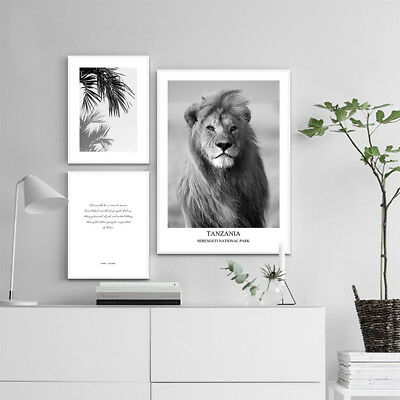 Black White Animal Canvas Print Lion Poster Nordic Style Painting Room Decor