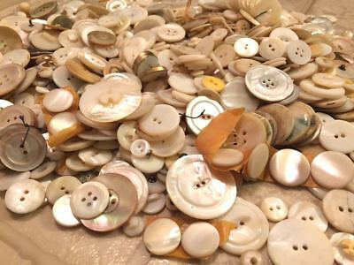 Vintage White Shell MOP Button Lot 5+ Pounds Many Sizes
