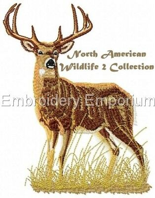 North American Wildlife  2 Collection - Machine Embroidery Designs On Cd