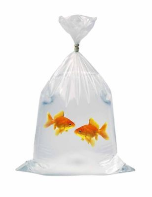Fish Transport Bags Polythene Discus Marines tropical fish shop quality 10X18