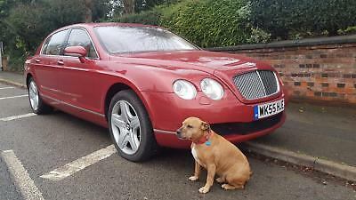 BENTLEY CONTINENTAL FLYING SPUR 5 SEATS Red Auto Petrol, 2005