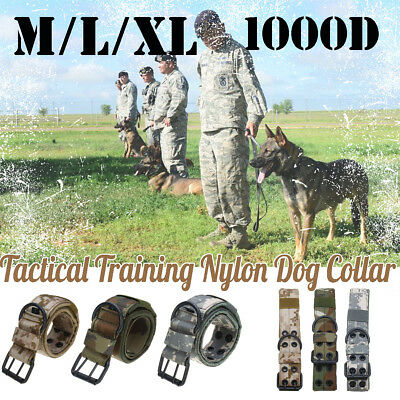 1000D Army Tactical Dog Collar Military with Metal Buckle Dog Training Collar UK