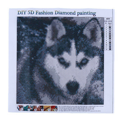 5D Snow Husky Wolf  Vintage Painting In Sailboat With Kids Room Decor  6A