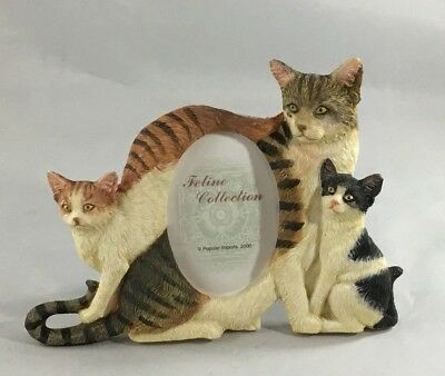 """Cat Kitten Feline Collection Picture Frame Photo 2x3"""" Boxed New Vintage"""