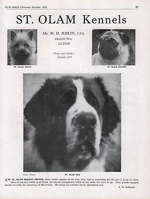 Saint Bernard Dog Breed Kennel Advert Print Page Our Dogs St. Olam Kennels 1951