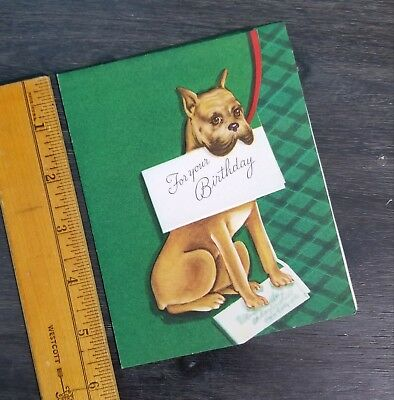 Vintage BOXER DOG Holding a BIRTHDAY GREETING CARD Green & Red Plaid CHRISTMASY