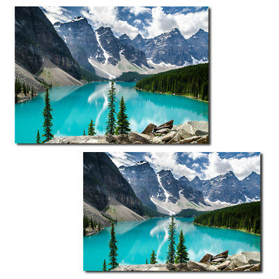 Various Unframed Modern Art Oil Painting Print Picture Home Wall Room Decoration