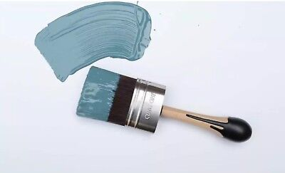 Cling On! S50 Shorty Paint Brush
