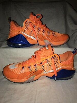 16c10563efd NIKE LEBRON XII Ext QS Wheat Suede 8 10 Condition SIZE 12 -  120.00 ...