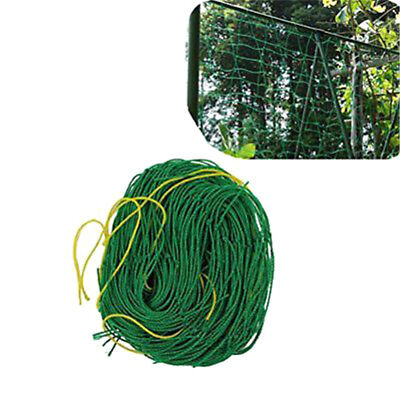 1.8x1.8m Garden Green Nylon Trellis Netting Support Climbing Plant Nets Fence GY
