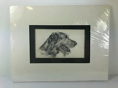 Original Drawing Of An Irish Wolfhound By G. Peters '87 Of Ch. Braden Of Eagle