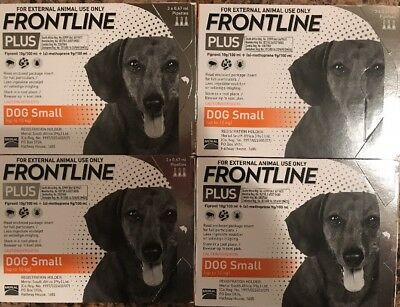Frontline Plus 12 Months Supply For Small Dogs 0-22lbs (0-10kg) By Merial, New!