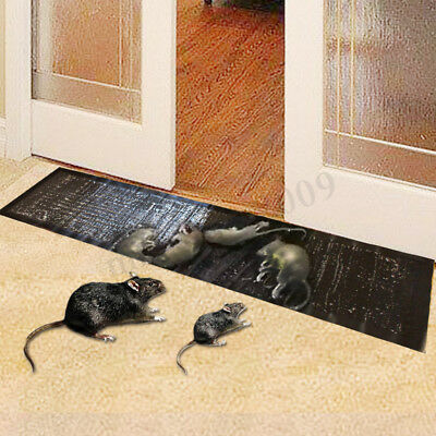 Large Mouse Rat Glue Traps Sticky Mice Rodent Catcher Trap Pads Board Trapper