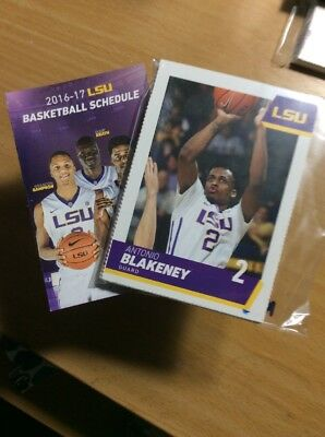 2016-17 LSU Men's Basketball Team Set & Pocket Schedule 16 Card Set