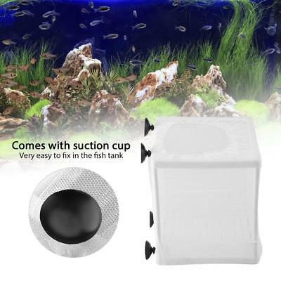 Fish Tank Baby Fry Newborn Breeding Breeder Net Box Hatchery Isolation Incubator