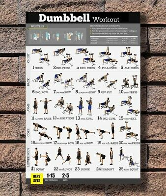 B-497 Dumbbell Workout Exercise Body Strength Instructional 27x40 Fabric Poster