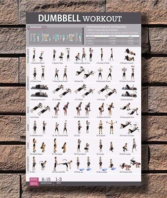 B-653 Dumbbell Workout Body Exercise Health Strengthen Chart 27x40 Fabric Poster
