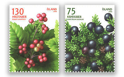 Iceland 2006 Wild Berries  Set Of 2 Stamps Mint Unhinged Muh