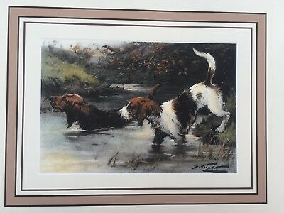 Rare Vintage Hunting Dog Print Tri Color White Otter hound Black Tan in Water