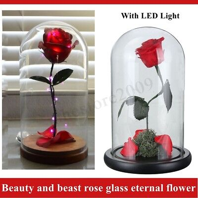 Preserved Beauty And The Beast Flower Natural Eternal Rose Christmas LED