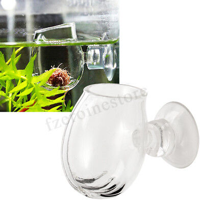 Aquarium Fish Tank Aquatic Plant Clear Glass Cup Holder + Sucker