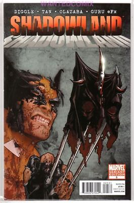 Shadowland #5 Christopher Variant Cover 1:25 Wolverine Daredevil New 1 1:25