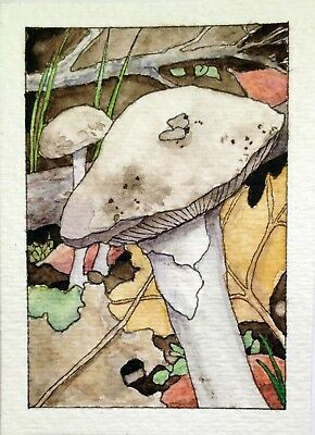 ACEO Original Watercolor Painting MUSHROOMS & LEAVES by W.Scholes, signed