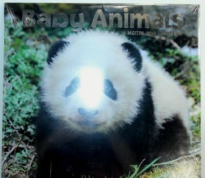 2014 Calendar Baby Animals sealed Great for Scapbooking