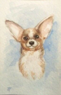 Original ACEO Dog 2  by Kovtun Daria