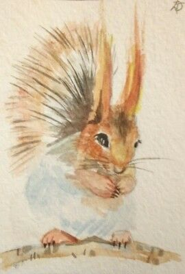Original ACEO Squirrel 3 by Kovtun Daria