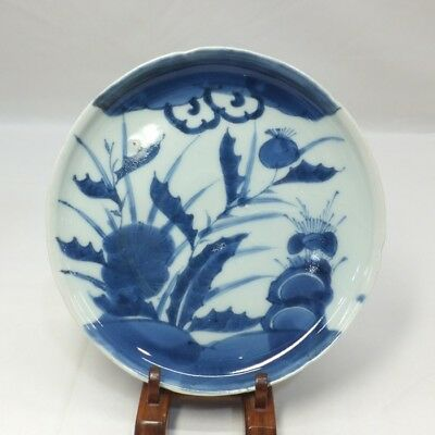 B514: Japanese plate of really old KO-IMARI blue-and-white porcelain in 18c