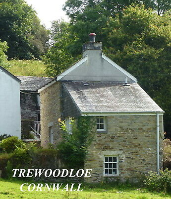 Spring In Cornwall. Beautiful Holiday Cottage Set In 4 Acres. Dog :-) Sleeps 3