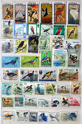 Birds On Stamps, Good collection of Different World Stamps, Thematic Stamps.