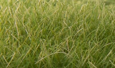 Woodland Scenics Field System™ FS626 - 12mm Static Grass - Medium Green - 28g
