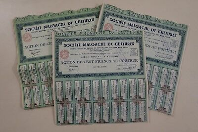 Societe Malgache De Cultures Action 100 Francs Tulear 1947 X 63 Actions
