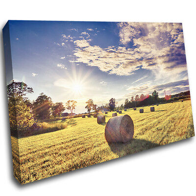 Hay Bales Farming Summer Sun Trees Canvas Poster Print Wall Deco Picture AE566