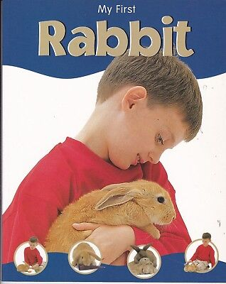 First Rabbit Guide Book For Kids (Paperback)