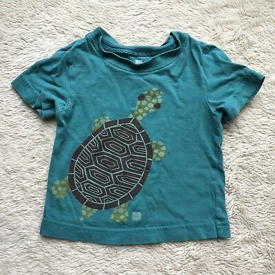 Tea Collection Graphic Tee Shirt Turtle Size 12-18 months Teal Blue Green