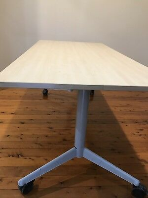 Werndl Folding Office Meeting Table / Desk