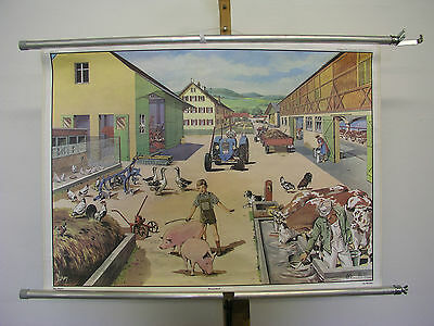 Beautiful Old Schulwandkarte Wall Picture Farm Farmer 35 3/8x25 3/16in Vintage
