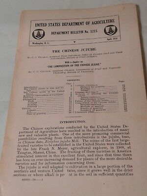 chinese jujube USDA bulletin no. 1215 informational vintage pamphlet April 1924