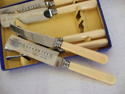 A Vintage Boxed Set Of Six Cream Handled Tea Knives - Lewis Rose & Co. Sheffield