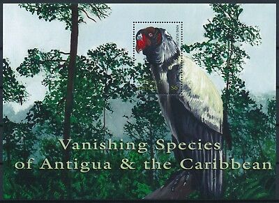 [HG25881] Antigua & Barbuda 2001 VULTURE - BIRDS Good sheet very fine MNH
