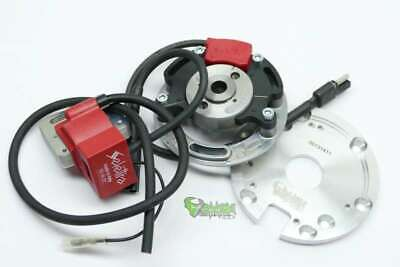 Selettra KZ complete analog System for Suzuki RM 250 (1976-1996) incl. Adapte...